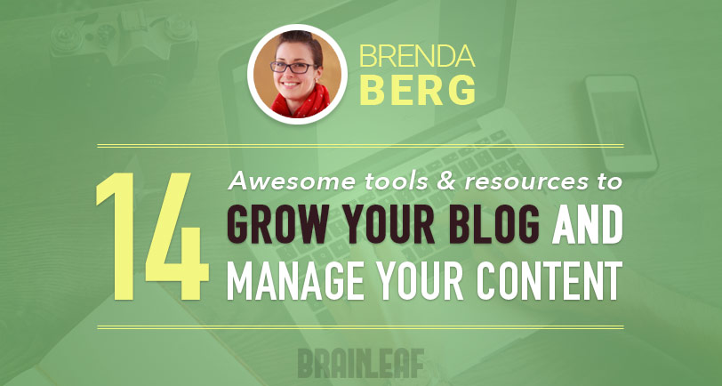 Grow your blog and manage your content